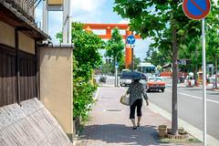 (蔡藍迪) Tags: 50mm 18g japan japanese d600 nikon nidomenokyoto kyoto 京都 日本 nipon torii 鳥居 平安神宮 大鳥居 二度目の京都