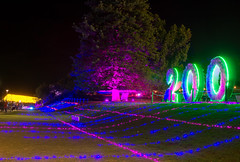 _MG_4887-HDR.jpg (Tibor Kovacs) Tags: night colours tree vivid australia events sydney projections light