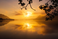Golden moments that feed the soul (SimonLea2012) Tags: mirror feedthesoul magichour sunset island morning leaves branches reflection reflections wonder senses experience nature lakedistrict mountain pool glow fog mist water lake clouds sun sunrise goldenhour dawn light golden