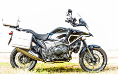 Honda Crosstourer VFR 1200x Highlander (Gerry Gutteridge) Tags: gerrygutteridge hondacrosstourervfr1200xhighlanderlimitededition motorbike motorcycleracing tourer crosstourervfr1200xhighlanderltdedition canon highkey