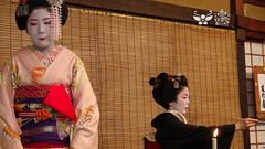 Maiko Mameharu  & Geiko Tsuruha  (occhidaorientale) Tags: maiko geiko geisha tsuruha  chanoyu indirettadakyto kyto2015 maikomameharu 143