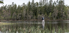 Get this (Bomanson) Tags: sea reflection nature water fishing sweden flyfishing hkenss