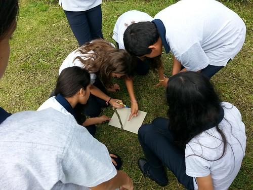 Institución: Valle del Sol Profesor: Jonathan Sánchez Araya Sección: 7C