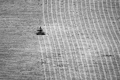 Vecchi lavori (giacomo.clementi) Tags: hill manatwork collina arare oldjob coltivare marchetourism discoverymarche ilikemarche