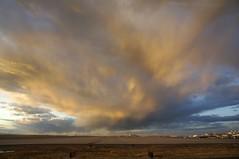 DSC09480 (meyerweb) Tags: sunset tarmac clouds airport colorado den denver goldenhour