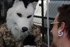 IMGP5790 (i'gore) Tags: cosplay agliana fumetto gioco fiabe trucco maschere mascherata mascherarsi