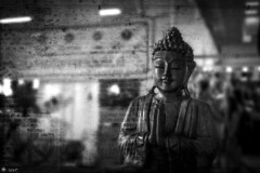 The Enlightened One (Alessandro Tamburro) Tags: peace buddha happiness pace share enlightened felicit