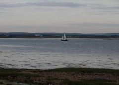 IMG_3430 (HannahBarnes79) Tags: sailing yacht gales cruiser cruisers tsc 2016 langstoneharbour tudorsc tudorsailingclub