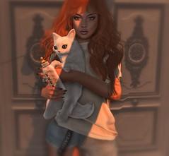 Being normal is boring. (Katy Hastings) Tags: portrait kunst kitty event secondlife rare gacha halfdeer monso kustom9 amitomo collabor88