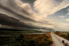 what once was (tom bourdot) Tags: cloud clouds gimp landscape marsh nature nikkor nikond3300 nj outside pond refuge road rural sky wetlands storm summer whatoncewas dream