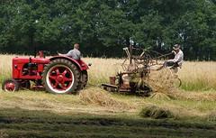 Harvest as in the old days (1) (joeke pieters) Tags: 1280730 panasonicdmcfz150 oogsten harvest nostalgie nostalgia trekker tractor haaksbergen twente overijssel nederland netherlands holland landelijk rural