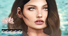 LOTUS. Misty Eyes *exclusive gift* (LOTUS. & Ugly Duckling) Tags: group gift lotus sl second life exclusive vip credit advantages new eyes mesh colors color brown blue green aqua lilac