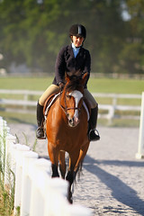 IMG_2715 (SJH Foto) Tags: horse show action shot tween teen teenager girls jumper jump hurdle wtc walk trot canter closeup