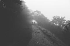 silhouettes (Monsieur_L) Tags: pilgrim pilgrimage santiago compostela compostelle mist forest hike hiker blackandwhite faded moody travel saintjacques pathway roncevaux