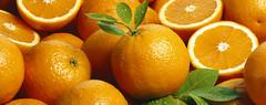 Oranges wallpaper (1) (ioestefotos) Tags: orange apfelsine orangen haufen viele tapete vollflchig halb hlften offen fruchtfleisch schale vitamine vitaminc frchte frucht obst saft fruchtsaft saftig aromatisch organisch frisch frische hell tropfen bltter gruen gelb sauber rein speise sommer ernte reif reife roh rohkost natrlich natur ernhrung gesundheit gesundesessen speisen landwirtschaft bauernmarkt markt vollkommenheit lebensfreude