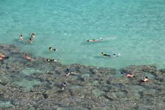 IMG_5269 (C-N, Chen) Tags: hanaumabay  honolulu  hawaii