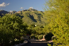 _ND81123 (vibrant_art) Tags: loewsventana canyonranch tucson arizona nikon desert usa