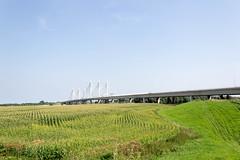 DSC_0046.jpg (jeroenvanlieshout) Tags: a50 verbreding renovatie tacitusbrug combinatieversterkenbruggen gsb strukton ballastnedam