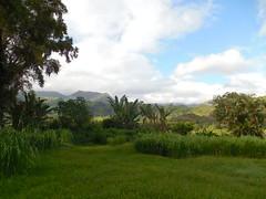 The Kauai Mountains (jimmywayne) Tags: hanalei bay hawaii kauaicounty kauai mountains