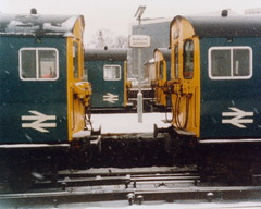 19850209 002 Watford Junction. 501170 Right, Keeps Company With Her Chilly Classmates (15038) Tags: electric br trains emu railways britishrail watfordjunction class501 501170