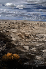 Painted Desert National Park Infra Red, AZ - 20150314CRN (Christopher Neel Photography) Tags: park blue arizona art nature yellow forest dessert photography rocks artistic painted fine christopher national ethereal infrared neel petrified otherworldly
