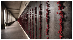 Canberra: Poppy's on the wall (Karl von Moller) Tags: australia canberra act kvmbest