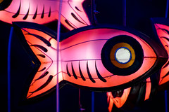 Jellyfish Chandeliers (Ample Projects) (Japester68) Tags: ocean city pink blue light red sea sculpture fish art station animal festival night train jellyfish purple sydney vivid australia event chandelier nsw aus tentacle 5star