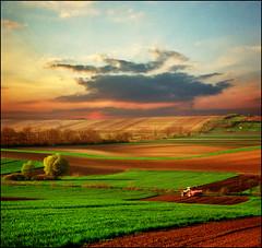 Spring sunset (Katarina 2353) Tags: landscape spring serbia fields vojvodina serbiainspired