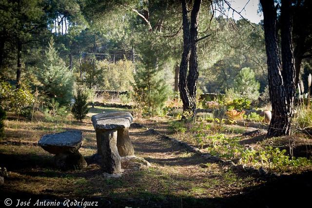 Rincón del Jardín Botánico de La Adrada