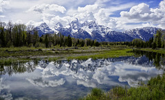 Spring at Schwabacher Landing (Jeff Clow) Tags: usa reflection nature landscapes spring bravo western wyoming timeless jacksonhole grandtetonnationalpark schwabacherlanding