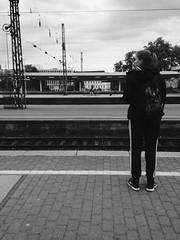 waiting (juliaschilling) Tags: travel bw station train waiting outdoor zug bahnhof db trainstation sw 365 deutschebahn reise bahnsteig warten schwarzweis project365 149365 vsco vscocam
