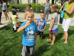 Tensile Bubble Program on July 7, 2016 at the Mail Library.  Children created their own bubble wands using pipecleaners. (ACPL) Tags: fortwaynein acpl allencountypubliclibrary childrensservices mainlibrary tensilebubble