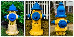 G53 - Numerical (Timothy Valentine) Tags: vacation hydrant us unitedstates misc maine large kennebunkport 37 2016 0716 onmycard flickrbingo4 flickrbingo4g53