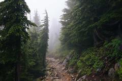 IMG_4159.jpg (Backpacking With Bacon) Tags: washington northerncascades hiking mtpilchuck granitefalls unitedstates us