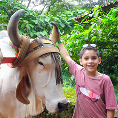 DSC_0799 (errolviquez) Tags: familia hijos paseos costa rica bela ja naturaleza catarata sobrinos