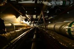 COE Leni (DST_8494) (larry_antwerp) Tags: coeleni 9453793 navitec reparatie onderhoud shiprepair antwerp antwerpen       port        belgium belgi          schip ship vessel