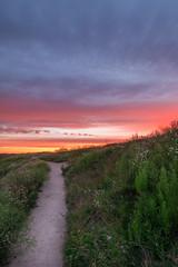 Sunset from Suomenlinna (3 of 3) (kasper.nyman) Tags: suomi finland helsinki nikon suomenlina 1224 nd8 1224mmf4