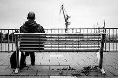 Hafenblick... (TS_1000) Tags: hamburg norden bank sw mann hafen kran elbe hinten ruhe fotoworkshop