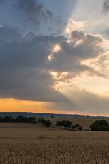 Abendzeit (thunderbird-72) Tags: felder sonnenstrahlen abendstimmung sunbeams lndlich rural fields clouds abend steineandergrenze nikond7100 wolken afsdxnikkor35mmf18g waldwisse alsacechampagneardennelorrain frankreich alsacechampagneardennelorraine fr