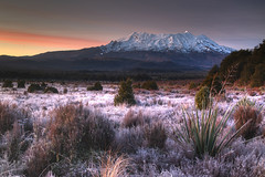 Ruapehu at Dawn (hapulcu) Tags: newzealand northisland oceania pacific tongariro volcano dawn sunrise winter frost