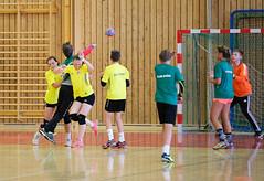 HandballMesterligaP1-9 (Sommereventyret) Tags: merker sommereventyret 2016 periode2 hndball mesterliga