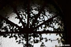 DSC_0150 cópia (M.SOARES) Tags: convento ipiranga abandonado prediosantigos salesiana