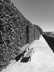 Jardins de l'évêché à Limoges (karine_avec_1_k) Tags: garden jardin france limoges vide empty seat banc