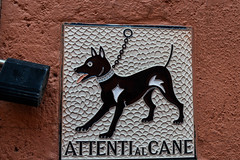 Attenti al Cane (zitla li) Tags: love beautiful miguel architecture de mexico photography town nice ancient nikon san colonial culture tranquility before sanmigueldeallende guanajuato lovely tradition allende d3200