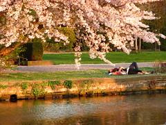 Un hermoso dia de primavera en Mülheim an der Ruhr...      EXPLORE # 26.04.2015 (libra1054) Tags: primavera germany spring printemps frühling mülheimanderruhr