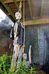 Skelington and model (Matt From London) Tags: skeleton model dinosaur minigolf hanging dummy manequin noose quicksand dinosaurgolf lostislandencounter