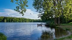 Am Beidendorfer See (MKallweit) Tags: de deutschland see landschaft schleswigholstein herkunft beidendorf xt1 verffentlicht 500pxcom xf16