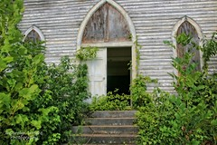 Coatopa Presbyterian Church (Carolyn Wright Photography) Tags: black church belt country alabama oldbuildings abandon sumter abandonedbuilding abandonedchurch presbyterianchurch churchsteeple oldchurches sumtercounty countrychurches coatopa sumtercountyal