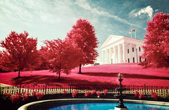 Infrared Capitol (BlueGoo Studios) Tags: color infrared filmphotographypodcast fpp aerochrome capitol richmond rva virginia red blue white
