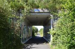 Kilmarnock-Irvine Cycle Path. Modern Underpass. (Phineas Redux) Tags: ayrshirescenes kilmarnockirvinecyclepath cyclepaths ayrshire scotland underpass